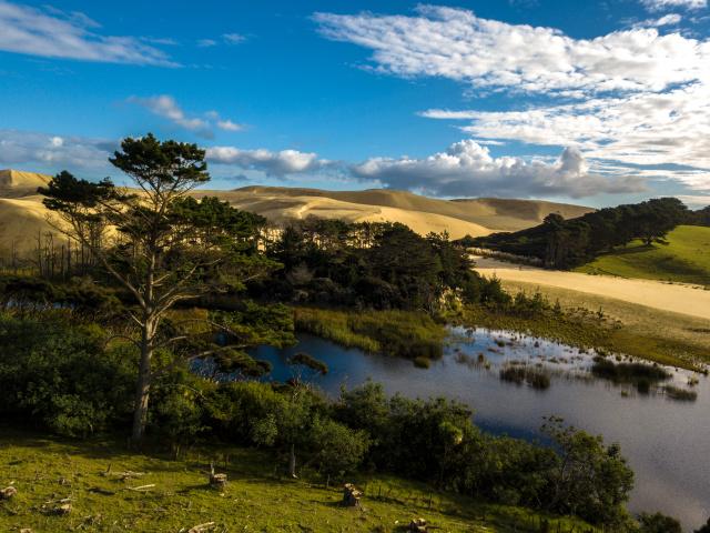 NZ dron poust (1 z 1)